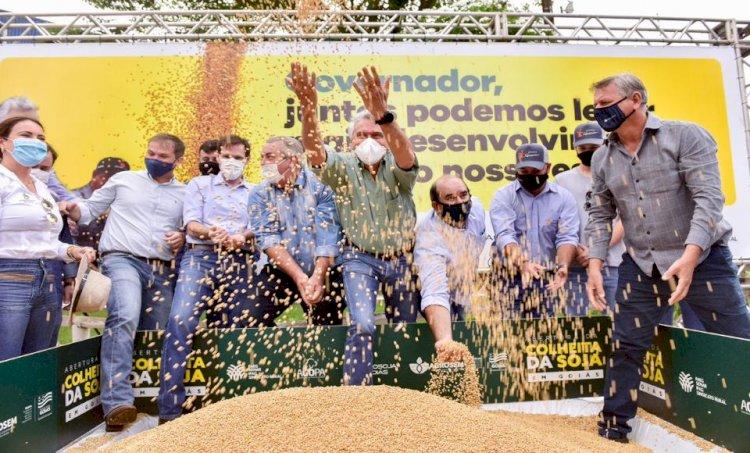 Goiás abre colheita da soja com previsão de safra recorde