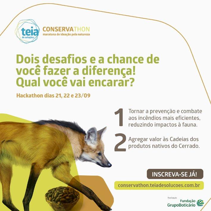 Maratona de ideação procura soluções para proteger e desenvolver o Cerrado