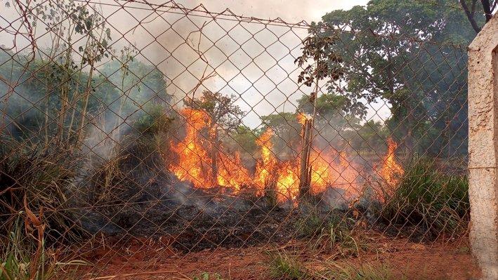 CRIME AMBIENTAL: Mais uma vez Mata do Açude foi vítima de incêndio